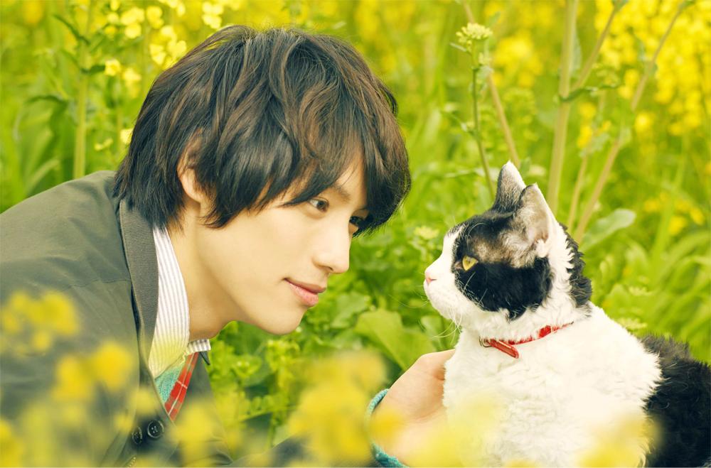 福士蒼汰が動物愛全開の優しい青年を好演! 映画「旅猫リポート」11月8日(金)にWOWOWで放送