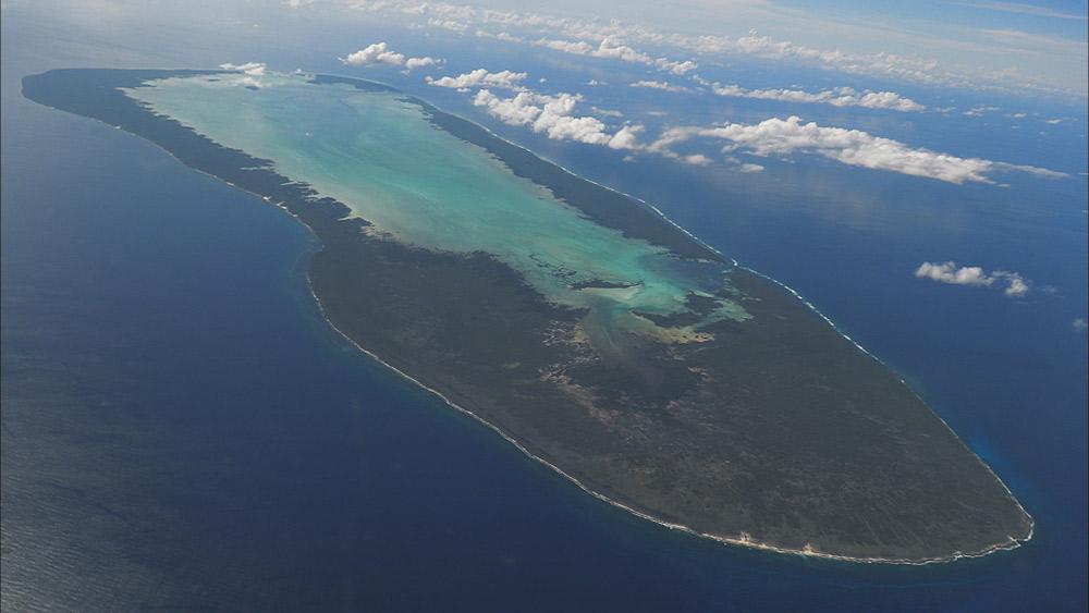 『世界遺産』放送25年スペシャル 民放初撮影! 貴重な映像にナレーション・杏も感動「現地に行ってみたい!」「インド洋のガラパゴス」アルダブラ環礁を2週連続で放送